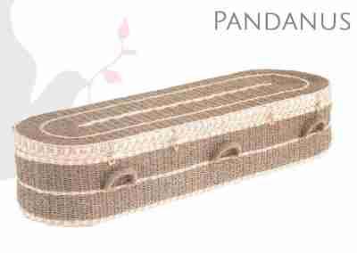 Pandanus